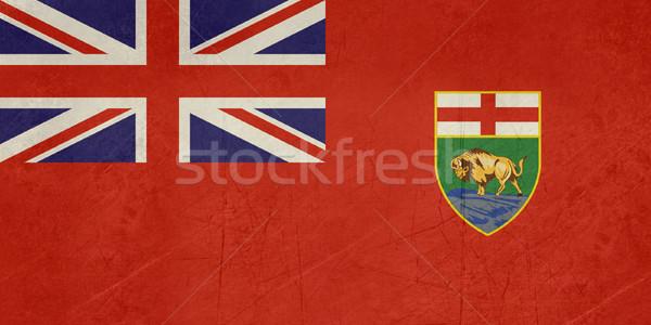 Grunge Manitoba state flag Stock photo © speedfighter