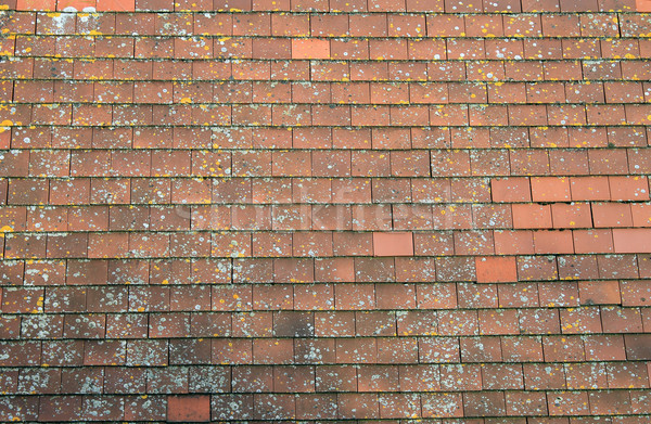 Old red tiled roof Stock photo © speedfighter