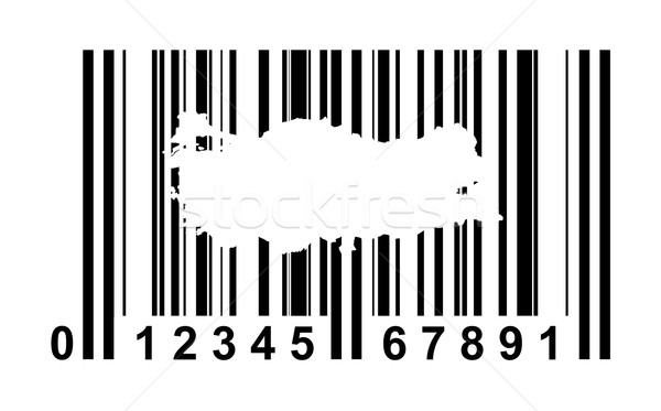 Turkey Bar code Stock photo © speedfighter