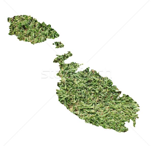 Malta ambientale mappa erba verde ecologico natura Foto d'archivio © speedfighter