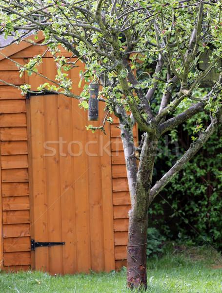 Kert fa almafa fából készült ház tavasz Stock fotó © speedfighter