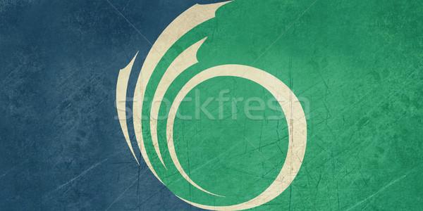Grunge Ottowa city flag Stock photo © speedfighter