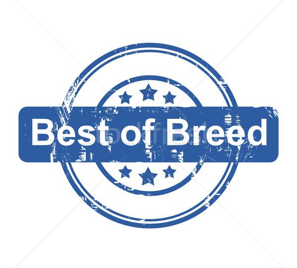 Best ras business stempel sterren geïsoleerd Stockfoto © speedfighter