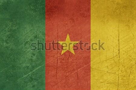 Grunge Camarões bandeira país oficial cores Foto stock © speedfighter