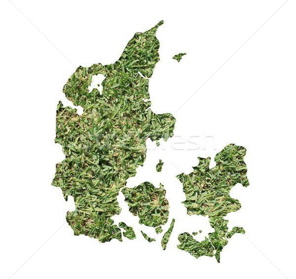 Dinamarca ambiental mapa hierba verde ecológico naturaleza Foto stock © speedfighter