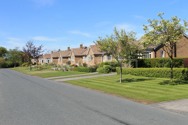 Row of bungalows in village Stock photo © speedfighter