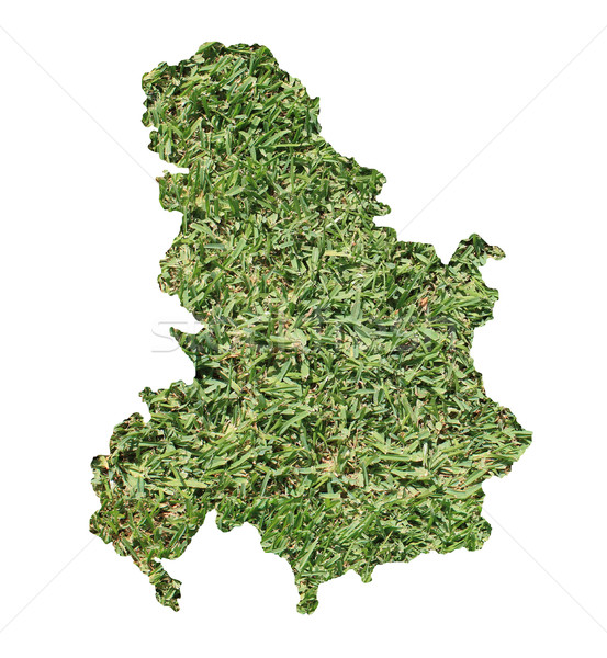 セルビア モンテネグロ 環境の 地図 緑の草 生態学的な ストックフォト © speedfighter