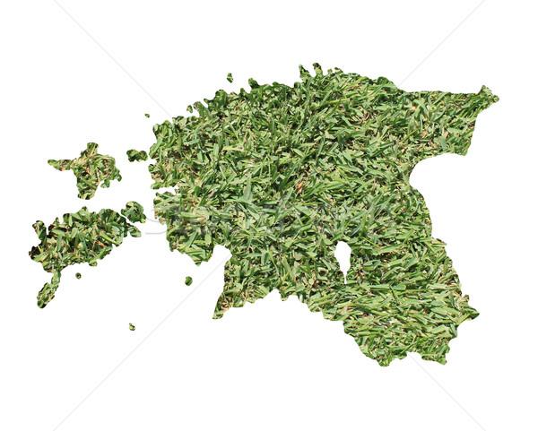 エストニア 環境の 地図 緑の草 生態学的な 自然 ストックフォト © speedfighter