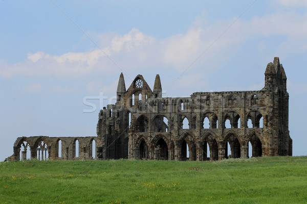 Whitby Abbey Stock photo © speedfighter