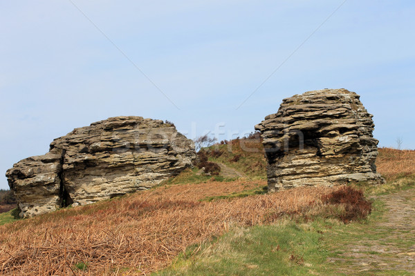 Rock stacks in countryside Stock photo © speedfighter