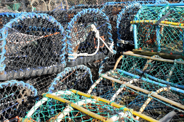 Lobster pots and creels Stock photo © speedfighter