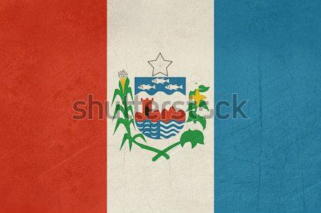 флаг Бразилия путешествия икона Сток-фото © speedfighter