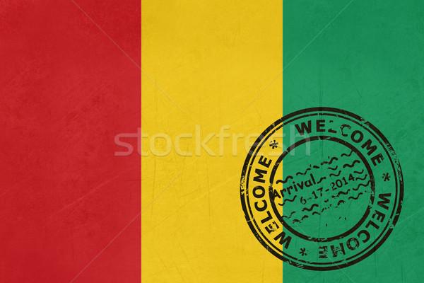 Karşılama Gine bayrak pasaport damga seyahat Stok fotoğraf © speedfighter