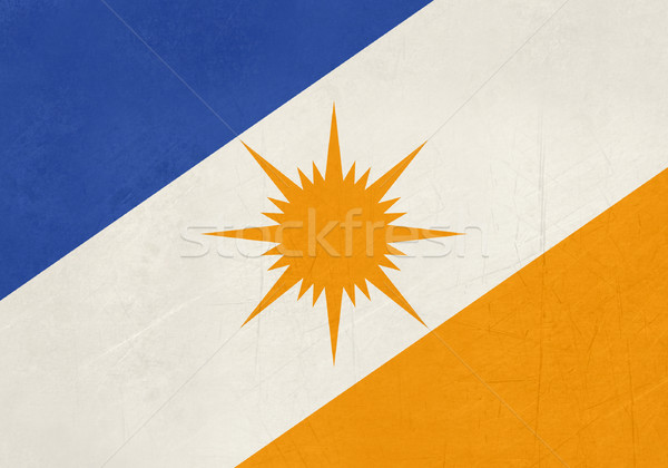 Grunge state flag of Tocantinas in Brazil Stock photo © speedfighter