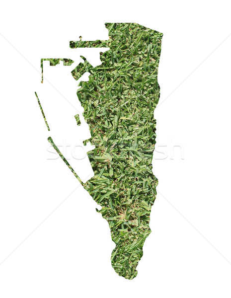 Ambiental mapa grama verde ecológico natureza verde Foto stock © speedfighter