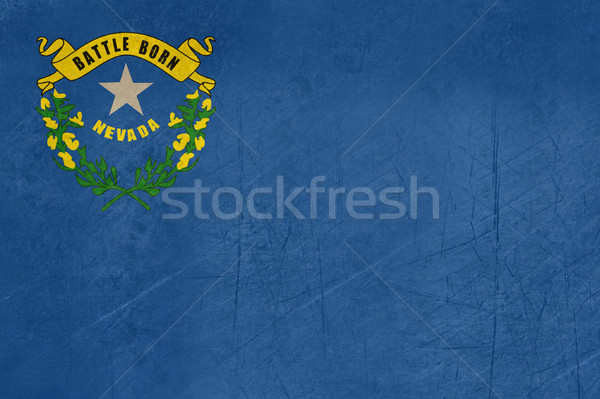 Grunge Nevada vlag illustratie amerika banner Stockfoto © speedfighter