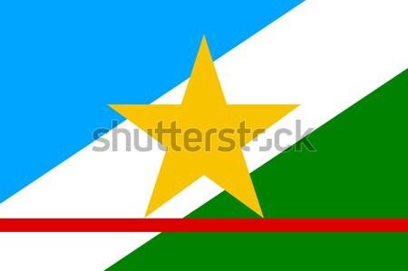 State flag of Roraima in Brazil Stock photo © speedfighter