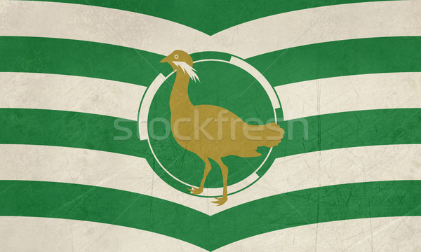 County Flag of Wiltshire in England Stock photo © speedfighter