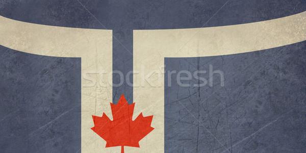 Grunge Toronto ciudad bandera oficial colores Foto stock © speedfighter