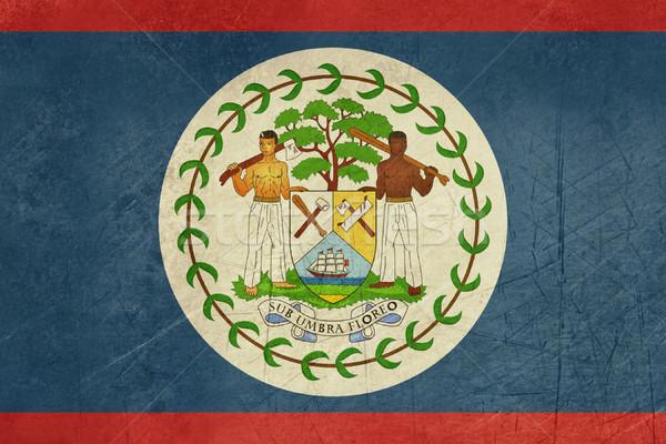 Grunge Belize zászló vidék hivatalos színek Stock fotó © speedfighter