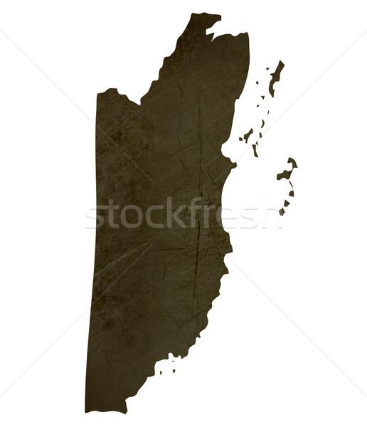 Sötét térkép Belize mintázott izolált fehér Stock fotó © speedfighter