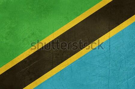 Grunge Tanzania banderą kraju urzędnik kolory Zdjęcia stock © speedfighter