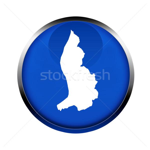 Liechtenstein map button Stock photo © speedfighter