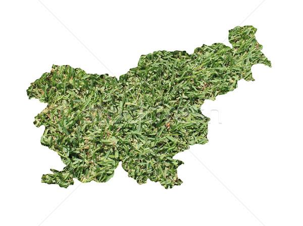 Slovenia ambientale mappa erba verde ecologico natura Foto d'archivio © speedfighter