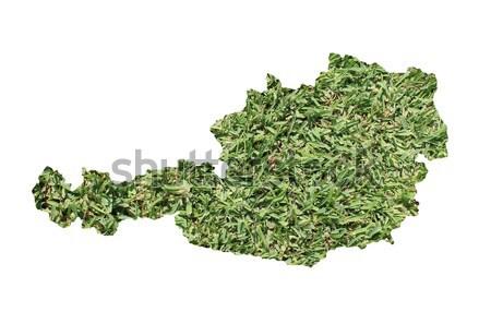 Латвия окружающий карта зеленая трава экологический природы Сток-фото © speedfighter
