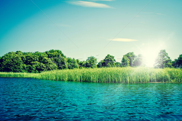 Idyllic lake with blue water and green trees Stock photo © Sportactive