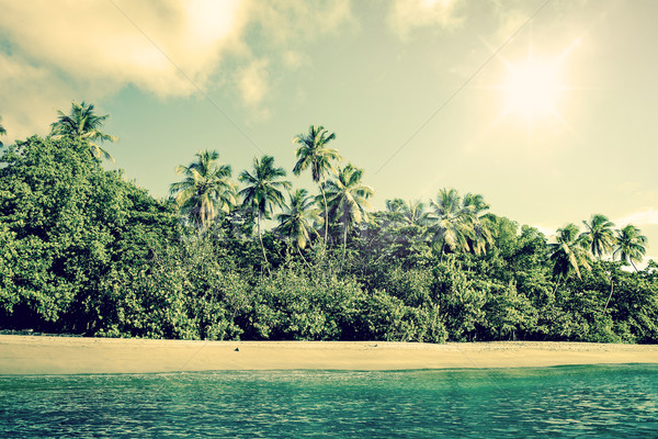 Tropical beach scenery with palm trees Stock photo © Sportactive