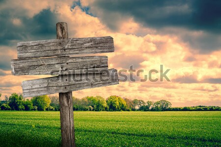 Wooden sign on a country road Stock photo © Sportactive