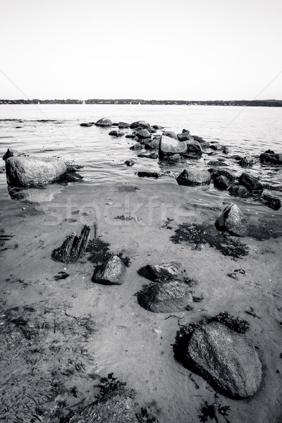 Beach with rocks in the sand Stock photo © Sportactive
