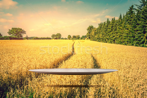 Stage hovering over a golden field Stock photo © Sportactive