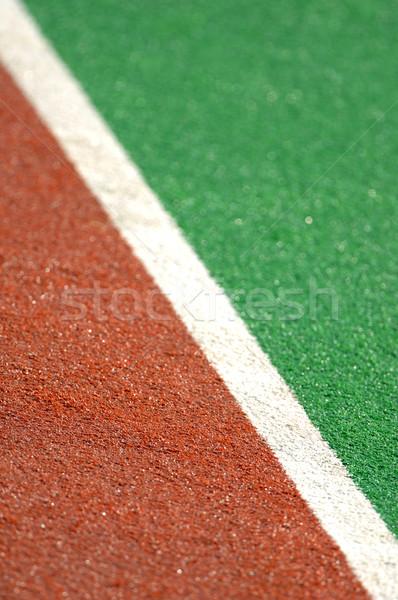 Jégkorong pálya gyeplabda mesterséges tőzeg labda Stock fotó © Sportlibrary