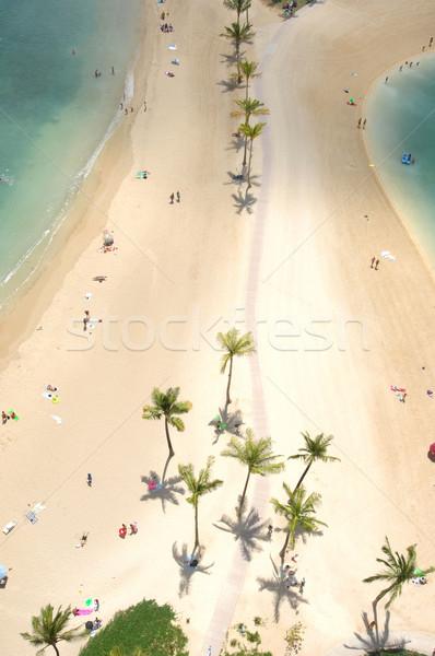 Spiaggia guardando verso il basso waikiki Honolulu godere Foto d'archivio © Sportlibrary