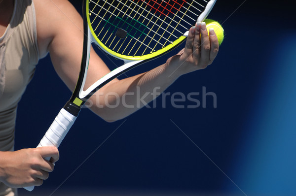serve Stock photo © Sportlibrary