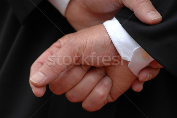 Business hands Stock photo © Sportlibrary