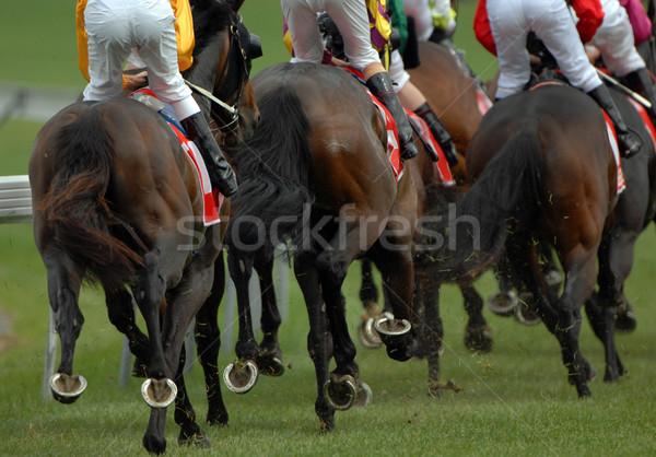 Lóverseny hátsó nézet csomag verseny lovak csoport Stock fotó © Sportlibrary