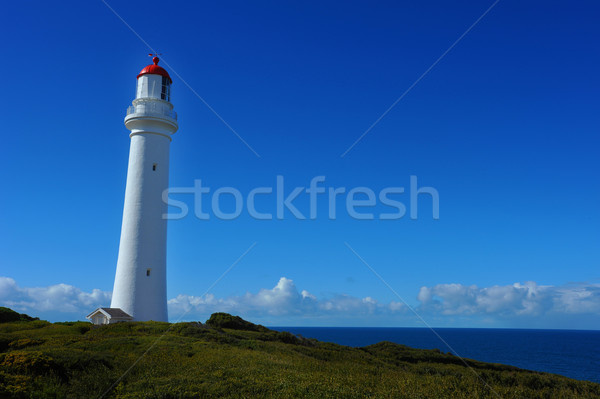 A lone lighthouse sits high on a hill overlooking the ocean on a beautiful sunny day. Stock photo © Sportlibrary