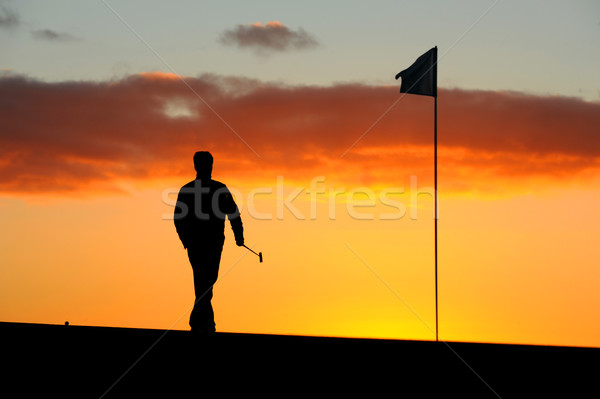 Morning golfer Stock photo © Sportlibrary