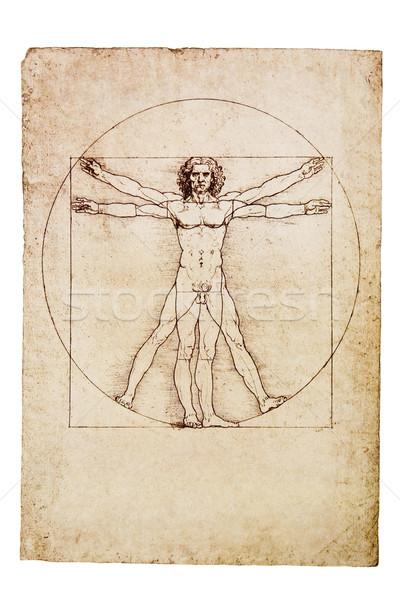 Da Vinci's Vitruvian Man Stock photo © sqback