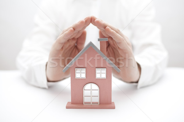 House protection  Stock photo © sqback