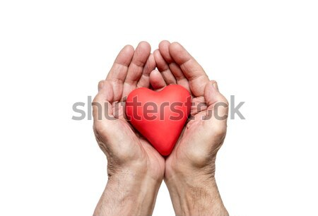 Old man's hands with red heart isolated on white background  Stock photo © sqback
