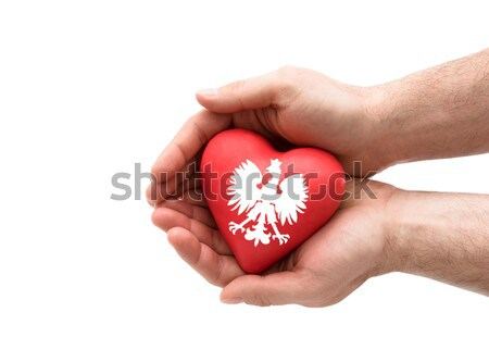Red heart in man's hands. Health insurance or love concept  Stock photo © sqback