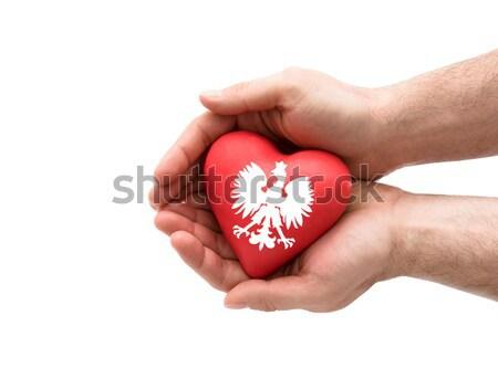 Vermelho coração mãos seguro de saúde amor médico Foto stock © sqback
