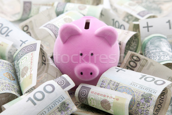 Piggy bank with polish money Stock photo © sqback