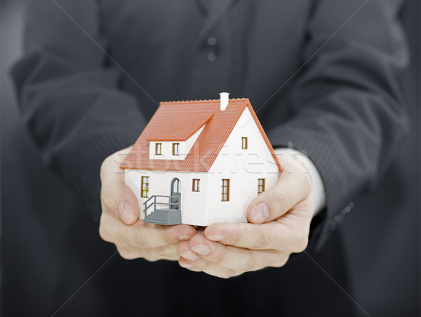 Home in hands Stock photo © sqback