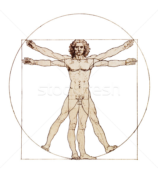 Da Vinci's Vitruvian Man isolated on white Stock photo © sqback