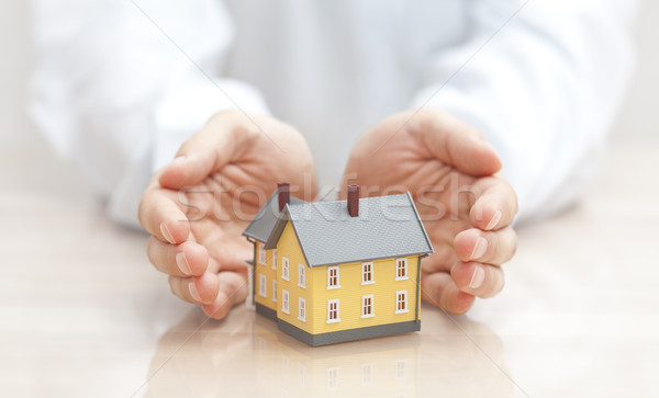 Home insurance  Stock photo © sqback